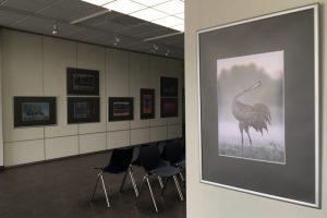 galeia- wystawa